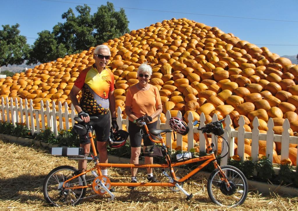 Bike Friday Tandem Electric Bicycle