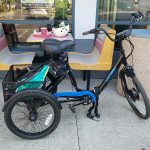 Electric Raleigh Tristar HD Trike